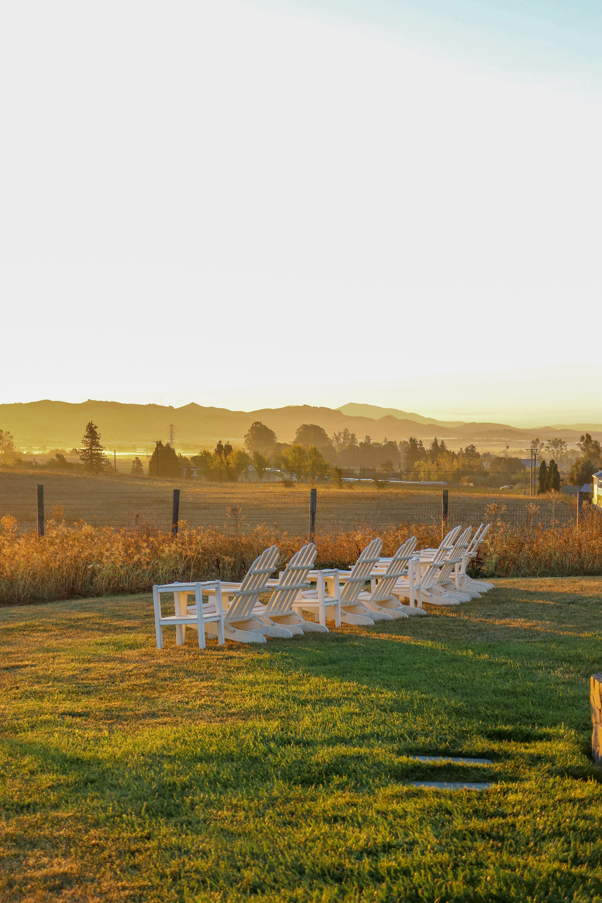 Weekend in Wine Country: Napa Valley Travel Guide || Where to go, where to stay, and the best wineries in Napa! || Kristy Wicks