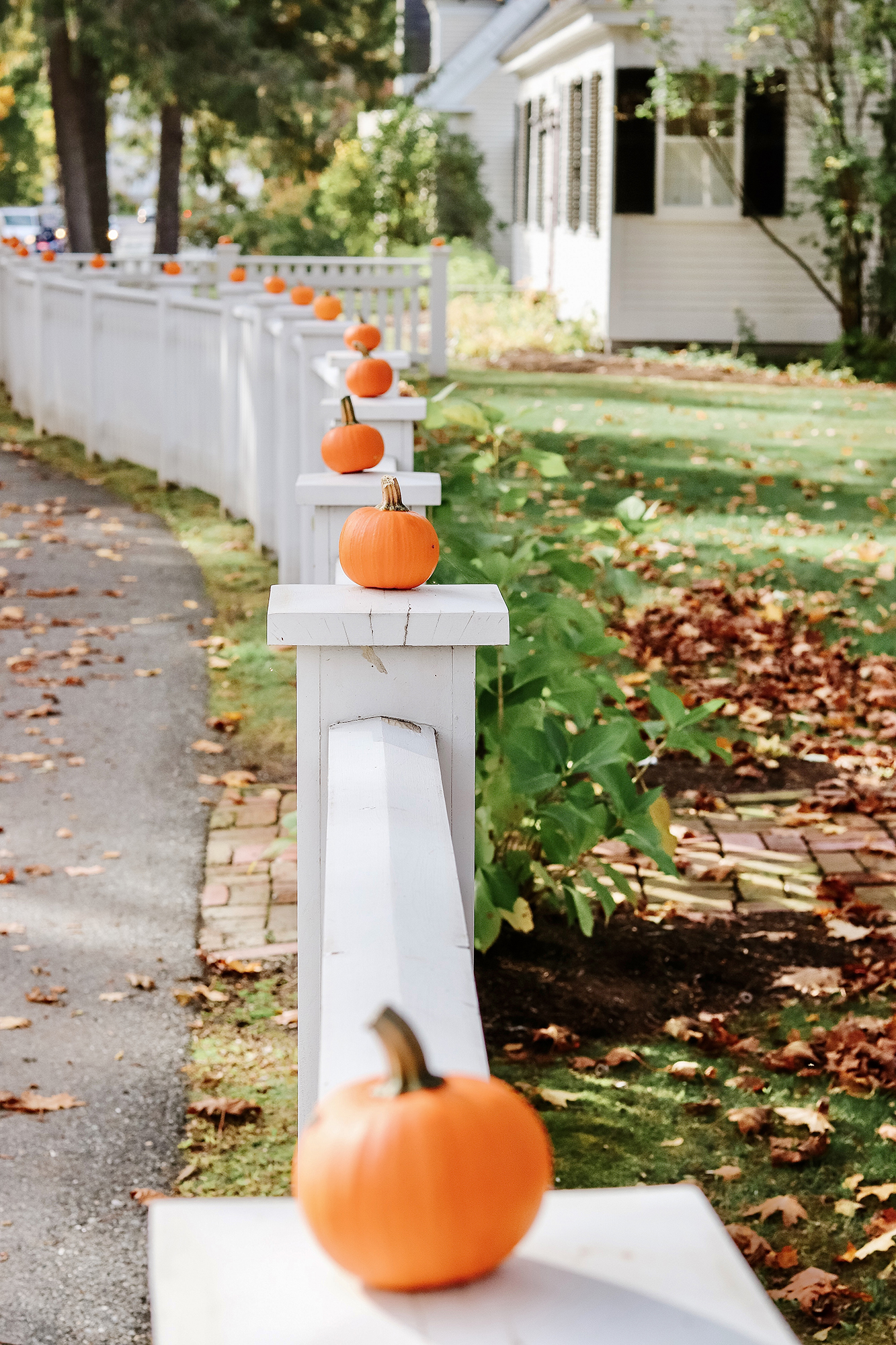 Fall Home Inspiration - cutest pumpkins. While Leaf Peeping in Vermont. | Kristy Wicks